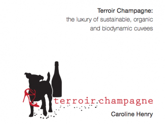 terroir_champagne_caroline_henri